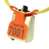 Product photo: Fokus tag, orange, with bell and part of KVIKK collar