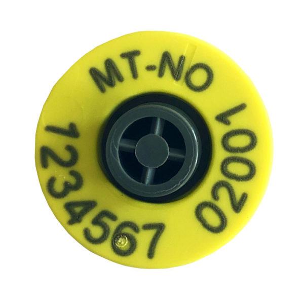 Foto: Combi E30 Pluss Button